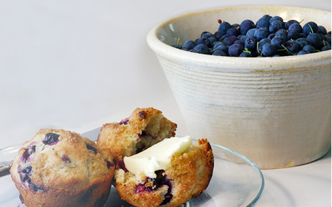Blueberries and Blueberries Muffins